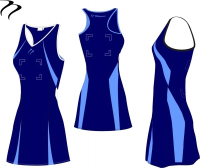 BIO14 Navy Light Blue Netball Dress